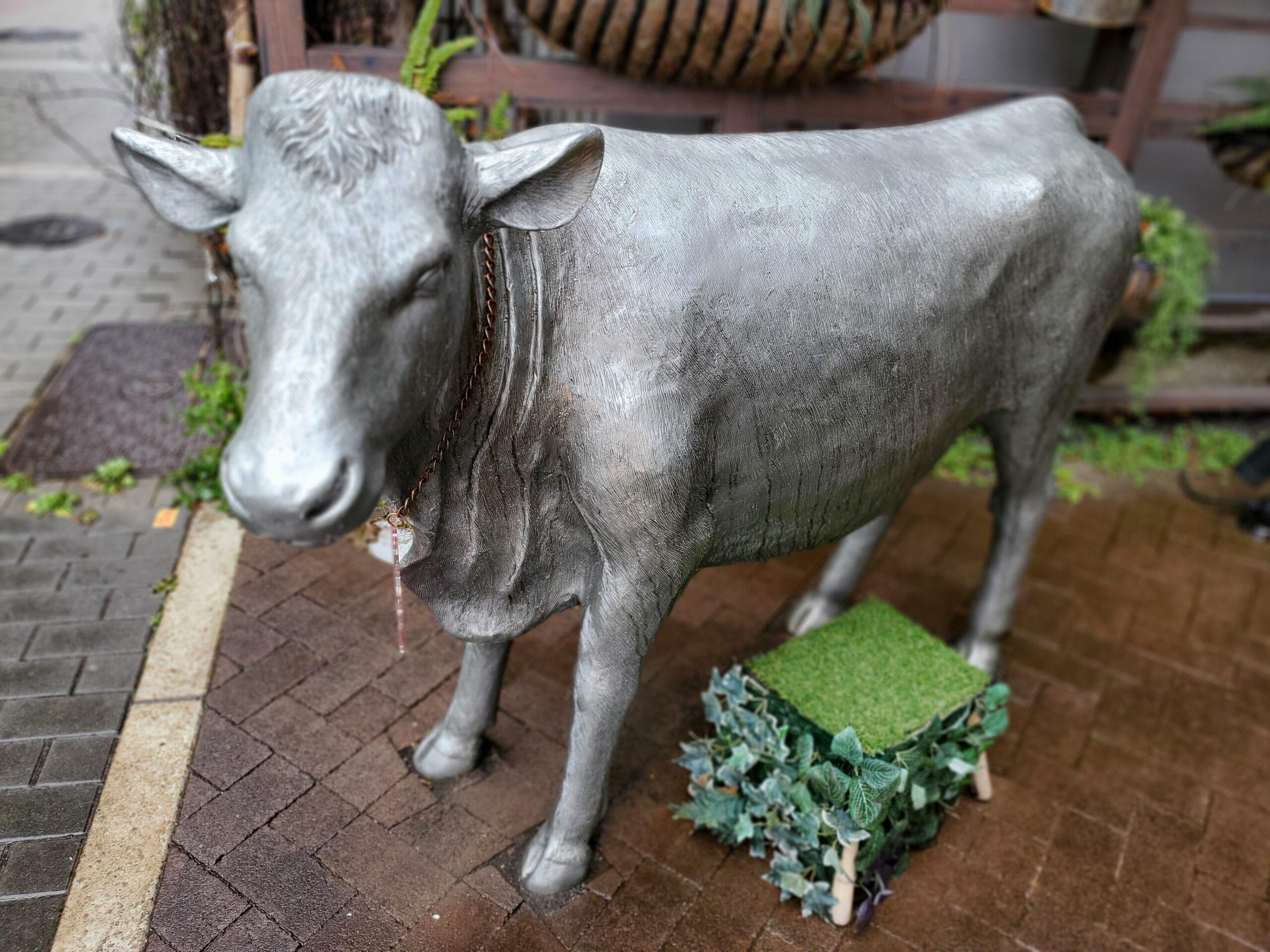 MISAWA 牛