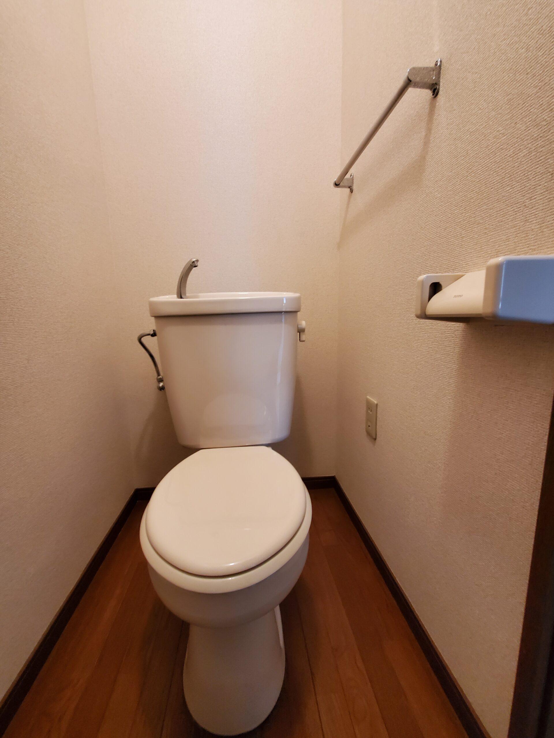 スターヒルズ藤森 旧トイレ